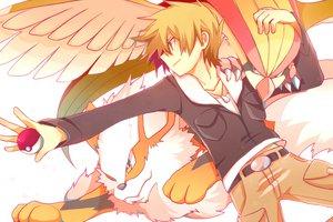 Rating: Safe Score: 56 Tags: arcanine ookido_green pidgeot pokemon rokuroku User: MissBMoon