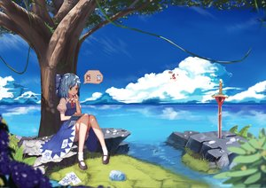 Rating: Safe Score: 112 Tags: animal bloomers book bow cirno clouds frog grass hakurei_reimu ofuda paper skirt socks sugar_sound sword touhou tree water weapon User: Flandre93