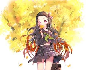 Rating: Safe Score: 39 Tags: autumn kamado_nezuko kimetsu_no_yaiba leaves mintchoco school_uniform User: FormX