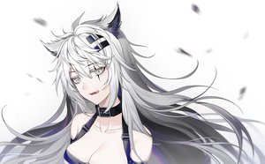 Rating: Safe Score: 37 Tags: aliasing animal_ears arknights breasts canegouzi choker cleavage fang gray_eyes gray_hair lappland_(arknights) long_hair polychromatic scar white wolfgirl User: otaku_emmy