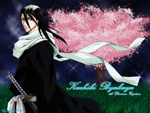 Rating: Safe Score: 12 Tags: all_male black_eyes black_hair bleach grass headdress japanese_clothes katana kuchiki_byakuya long_hair male night petals scarf stars sword tree weapon User: Oyashiro-sama