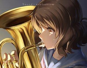 Rating: Safe Score: 31 Tags: close hibike!_euphonium instrument nyum oumae_kumiko signed User: mattiasc02