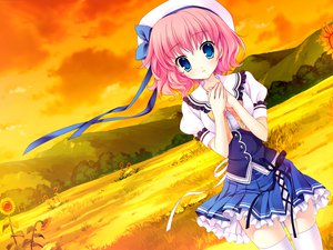 Rating: Safe Score: 30 Tags: blue_eyes clouds flowers game_cg hat himezono_risa landscape mitha nanawind pink_hair scenic seifuku short_hair sky sunflower sunset thighhighs yuyukana User: bloorex