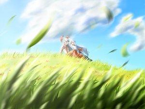 Rating: Safe Score: 26 Tags: blue_hair clouds fujiwara_no_mokou grass hat kamishirasawa_keine ribbons sky touhou User: fgt1111