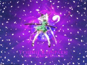 Rating: Safe Score: 25 Tags: katana konpaku_youmu myon petals sword touhou weapon User: 秀悟