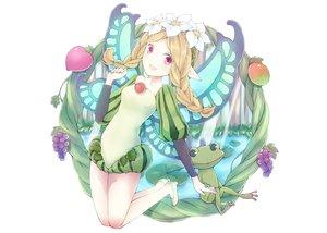 Rating: Safe Score: 67 Tags: animal aquarium_tama blonde_hair fairy flowers food frog fruit mercedes odin_sphere pink_eyes white User: austerely