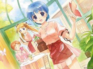 Rating: Safe Score: 1 Tags: apron augustic_pieces nishina_kyouko ribbons shibugaki_matsuri tachibana_chihiro tsuki_ha_higashi_ni_hi_ha_nishi_ni User: 秀悟