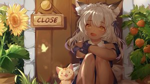 Rating: Safe Score: 87 Tags: animal animal_ears cat close dark_skin flowers foxgirl game_cg long_hair maid mirror_(game) slave_hill sunflower tagme_(artist) tail white_hair yellow_eyes User: Demuwu