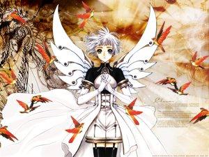 Rating: Safe Score: 18 Tags: animal bird clamp clover sue_(clover) wings User: Oyashiro-sama