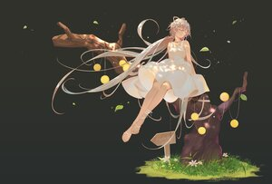 Rating: Safe Score: 58 Tags: black brown_hair dress flowers gradient grass gray long_hair luo_tianyi summer_dress tidsean tree twintails vocaloid vsinger User: BattlequeenYume