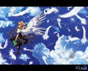 Rating: Safe Score: 3 Tags: air feathers kamio_misuzu wings User: Oyashiro-sama