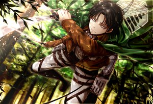 Rating: Safe Score: 81 Tags: all_male angel31424 forest levi_ackerman male shingeki_no_kyojin tree User: FormX
