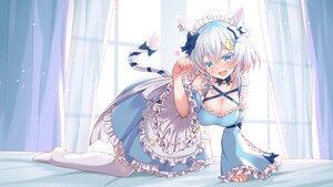 Rating: Safe Score: 69 Tags: animal_ears aqua_eyes bettle_(b_s_a_n) breasts catgirl cleavage fang lolita_fashion maid shiraishi_yukino tail waifu2x User: BattlequeenYume