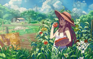 Rating: Safe Score: 124 Tags: animal dog dress food fruit grass hat long_hair m_george original purple_hair red_eyes summer_dress tree User: FormX