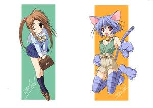 Rating: Safe Score: 10 Tags: animal_ears blue_hair brown_eyes brown_hair catgirl red_eyes ribbons school_uniform shorts suzuhira_hiro tagme tail User: Oyashiro-sama
