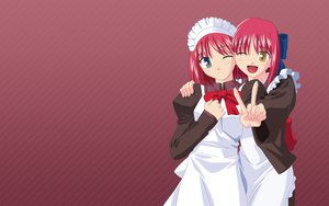 Rating: Safe Score: 8 Tags: blue_eyes brown_eyes hisui kohaku maid red red_hair shingetsutan_tsukihime twins vector User: Oyashiro-sama