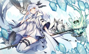 Rating: Safe Score: 85 Tags: animal animal_ears arknights bird boots dress fy_fei_xiao_ya long_hair owl ptilopsis_(arknights) staff thighhighs white_hair yellow_eyes User: PrimalAgony