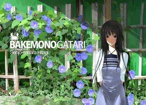 Rating: Safe Score: 88 Tags: bakemonogatari black_eyes black_hair dress flowers long_hair mikipuruun_no_naegi monogatari_(series) senjougahara_hitagi User: HawthorneKitty