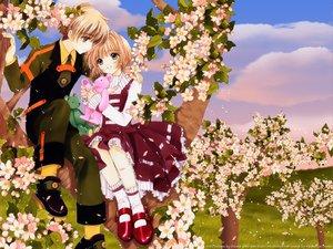 Rating: Safe Score: 45 Tags: brown_hair card_captor_sakura clamp flowers kinomoto_sakura li_syaoran petals teddy_bear tree User: Oyashiro-sama
