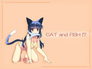Rating: Safe Score: 39 Tags: animal animal_ears barefoot blue_hair breasts catgirl cleavage fish red_eyes swimsuit tail User: Oyashiro-sama
