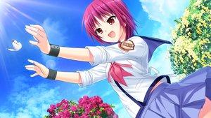 Rating: Safe Score: 30 Tags: angel_beats! clouds game_cg iwasawa_masami key na-ga seifuku sky User: Tensa
