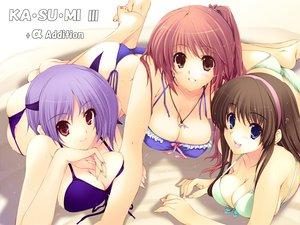 Rating: Safe Score: 44 Tags: ayane bikini dead_or_alive hitomi iizuki_tasuku kasumi swimsuit User: Oyashiro-sama