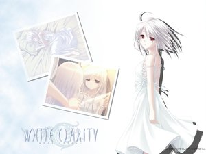 Rating: Safe Score: 10 Tags: dress long_hair red_eyes rino short_hair white_clarity white_hair User: Oyashiro-sama