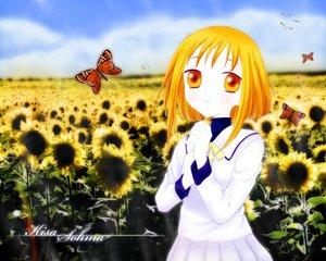 Rating: Safe Score: 1 Tags: flowers fruits_basket sohma_kisa sunflower User: Oyashiro-sama