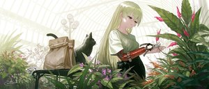 Rating: Safe Score: 59 Tags: animal cat flowers green_hair long_hair original purple_eyes reoen signed User: BattlequeenYume