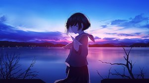 Rating: Safe Score: 109 Tags: aircraft black_hair clouds dark landscape mifuru original paper polychromatic scenic school_uniform short_hair sky sunset water User: sadodere-chan