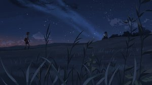 Rating: Safe Score: 41 Tags: byousoku_5_centimetre clouds dark grass night sky sumida_kanae toono_takaki User: cadenza