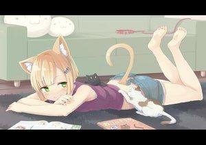 Rating: Safe Score: 184 Tags: animal animal_ears barefoot blonde_hair cat catgirl collar green_eyes inu_(kuroinu0720) original short_hair shorts tail User: SciFi