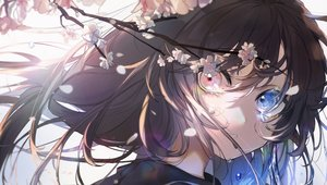 Rating: Safe Score: 77 Tags: bicolored_eyes brown_hair cherry_blossoms close flowers hassan_(sink916) original petals tears User: FormX