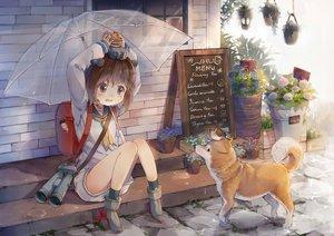 Rating: Safe Score: 146 Tags: animal bird brown_hair dog flowers food ivy1993 kantai_collection seifuku shimakaze_(kancolle) short_hair socks umbrella yukikaze_(kancolle) User: Wiresetc