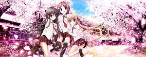 Rating: Safe Score: 93 Tags: akizuki_tsukasa cherry_blossoms dualscreen flowers haruno_tsubame karasuma_miyako minato_miu sakura_sakimashita sorahane User: Avenger