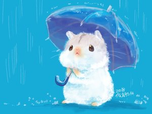 Rating: Safe Score: 29 Tags: animal blue nobody original rain umbrella water yutaka_kana User: otaku_emmy