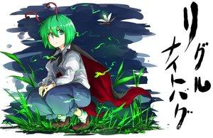 Rating: Safe Score: 22 Tags: aliasing animal animal_ears cape green_eyes green_hair kan_(aaaaari35) short_hair touhou wriggle_nightbug User: RyuZU