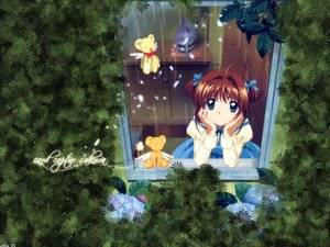 Rating: Safe Score: 23 Tags: brown_hair card_captor_sakura kero kinomoto_sakura leaves rain water User: Oyashiro-sama