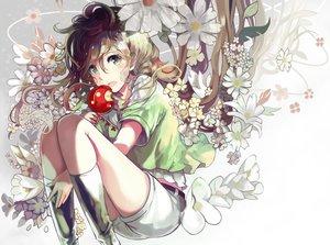 Rating: Safe Score: 24 Tags: apple blonde_hair blue_eyes candy flowers kneehighs long_hair original sasurai_susuki shorts User: Flandre93