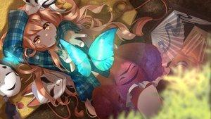 Rating: Safe Score: 97 Tags: brown_eyes brown_hair butterfly drink fan food hata_no_kokoro long_hair mask rukousou_no_hana skirt touhou User: RyuZU
