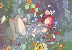 Rating: Safe Score: 59 Tags: all_male apple barefoot flowers food fruit green_eyes leaves long_hair male orange_(fruit) original petals red_hair see_through tagme_(artist) water wet User: otaku_emmy