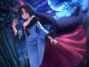 Rating: Safe Score: 156 Tags: animal_ears black_hair dress ibuki_notsu imaizumi_kagerou long_hair moon night red_eyes tail touhou tree wolfgirl User: Flandre93