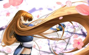 Rating: Safe Score: 96 Tags: brown_hair dead_or_alive flowers kasumi long_hair tagme_(artist) User: Wiresetc