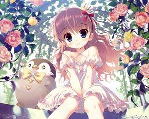 Rating: Safe Score: 156 Tags: animal blue_eyes brown_hair cropped crown dengeki_moeoh dress flowers loli original penguin rose santa_matsuri scan User: mattiasc02