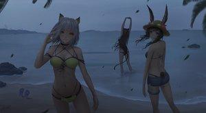 Rating: Safe Score: 111 Tags: amiya_(arknights) animal_ears arknights beach bikini black_hair blue_eyes brown_hair bunny_ears dark gray_hair green_eyes jay_xu kal'tsit_(arknights) navel short_hair shorts skyfire_(arknights) swimsuit tail water User: BattlequeenYume