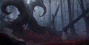 Rating: Safe Score: 99 Tags: animal bird dark fom_(lifotai) forest original tree User: mattiasc02