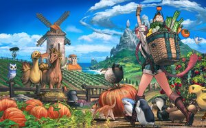 Rating: Safe Score: 38 Tags: animal animal_ears bird braids cat catgirl chocobo final_fantasy final_fantasy_xiv gloves green_eyes horse miqo'te owl pumpkin red_hair shirt shorts square_enix tail watermark windmill User: SciFi