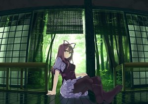 Rating: Safe Score: 171 Tags: bow brown_eyes dress garnet long_hair pantyhose touhou yakumo_yukari User: Flandre93
