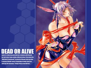 Rating: Safe Score: 28 Tags: ayane breasts cleavage dead_or_alive purple_hair ribbons tagme User: WhiteExecutor