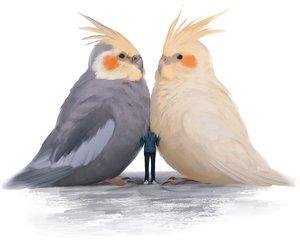 Rating: Safe Score: 42 Tags: animal arizuka_(13033303) bird cropped original white User: otaku_emmy